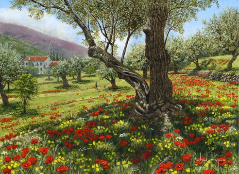 Painting - Andalucian Olive Grove