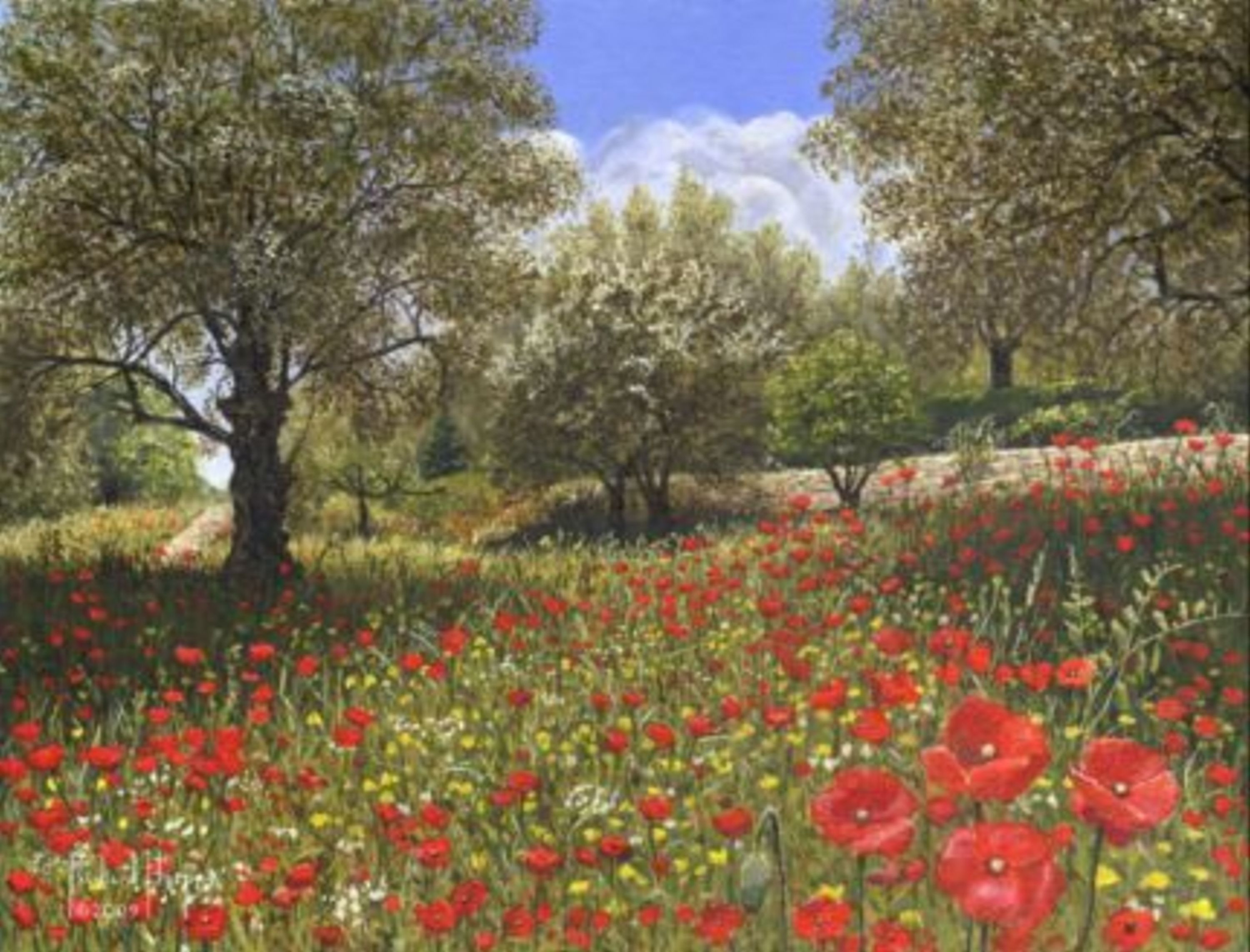 Painting - Andalucian Poppies, Spain